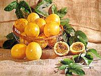http://www.terra.com.br/culinaria/img/maracuja_abc.jpg