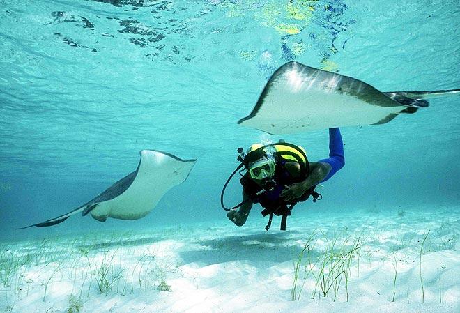 Conheça 30 destinos imperdíveis do caribe para curtir o verão